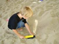 Paleontologické zkušenosti