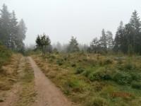 procházka tanvaldskými lesy