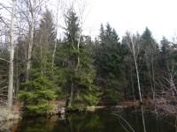 Jelení rybník