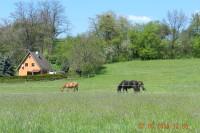 Zábřeh - Nemile - přehr.Nemilka - Růžové údolí rest. - pěší cca 8 km (pro děti,seniory,kola)
