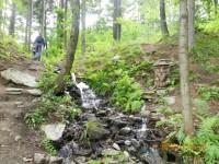 Expozice Koutecký les - Kouty nad Desnou