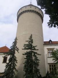 dominantní věž