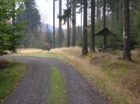 Lesní cesta u Malého Stožce