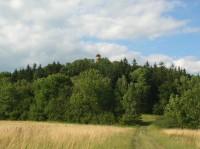 Rozhledna Strážný vrch zdálky