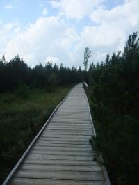 Povalový chodník na Jezerní slati