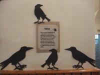 Záhadami opředené Kittlovo muzeum