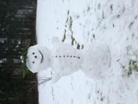 Sněhulák..:-)