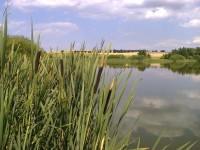 Přírodní památka Nebeský rybník