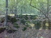 Přírodní rezervace Zadní Hády