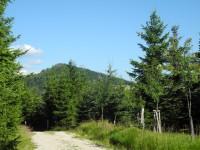 Cesta na Jizerku a pohled na Bukovec