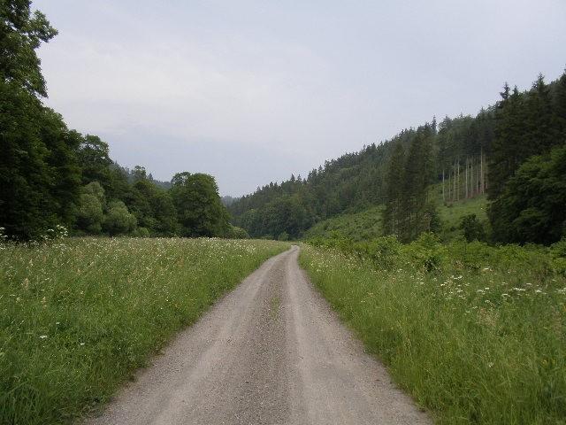 Výsledek obrázku pro něčínský potok a odra soutok