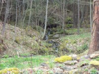 Růžďský potok