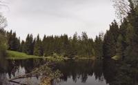 rybník Uhlíř