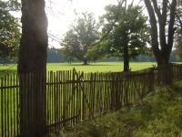 Přírodní památka Černická obora