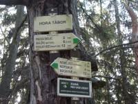 Burkovák (hora Tábor) - vrch