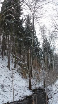 Údolí Brložského potoka