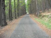 Na kole k Plešnému jezeru