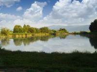 Střižovický rybník