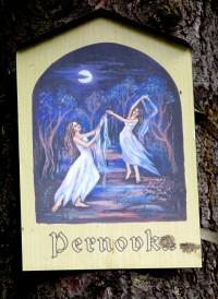 Kde za nocí tančí víly. Louka Permonka, Nové Město na Moravě.