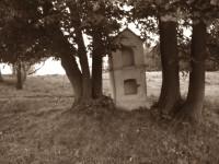Kapličky tu stojí bílé a krávy divoké. Nové Vilémovice, Rychlebské hory.