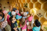 Hulice - Včelí svět