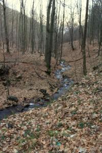 Údolí Unčínského potoka