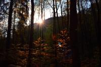 Rešovské vodopády na podzim