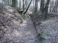 Lužické hory - skalní reliéfy a Milštejn