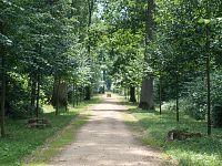 Zámecký park Kačina