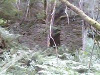 Po stopách zmizelé Šumavy-Harantův mlýn