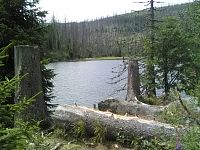 Cesta k jezeru Laka