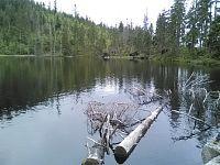 Výlet na Prášilské jezero
