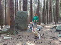 Tip na léto: Šumava s dítětem a psem