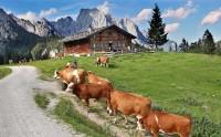 Putování po Berchtesgadenských Alpách