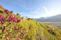 Zarezervujte si letní dovolenou v Jižním Tyrolsku včas