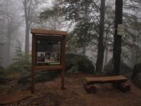 Ořešník – významný výhledový bod do NPR Jizerskohorské bučiny