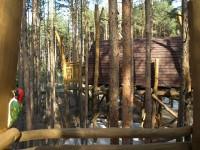 U Senftenberského jezera v Lužici se ubytujete na stromě