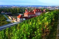 Praha Troja: vinice sv. Kláry