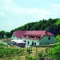 Vinařství Sádek; Foto: publikace Krajem vína