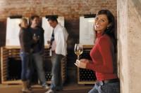 Foto: Salon vín ČR; archiv Vinařského fondu