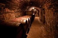 Tak trochu jiná Morava ve vinařství ARTE VINI