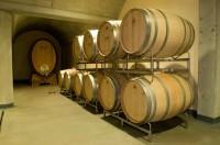 Vinařství Gotberg – nový směr vinařské kultury