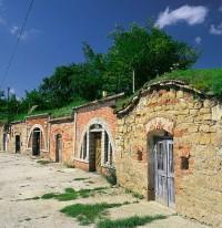 Nezaměnitelný půvab Mařatických vinohradů