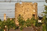Hrádek Lampelberg – strážce znojemských vinic