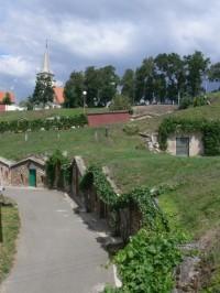 Zdroj foto: www.vinazmoravy.cz