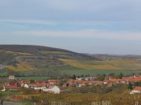 Vinařství PATRIA Kobylí – symbióza tradic a moderní technologie