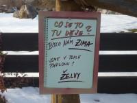 želvy v zimě, zoo praha