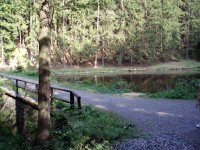cesta přes Panský rybník