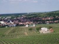 výhled z rozhledny (Velké Pavlovice)