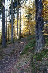 Vlevo na stromě řada značek k výběru
